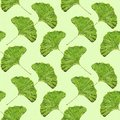 Seamless ginkgo leaf pattern wallpaper Royalty Free Stock Photo