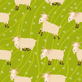 Seamless goats background on green field Royalty Free Stock Image