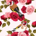 Seamless goldfinch and roses
