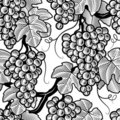 Seamless grape background black and white Stock Photos