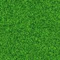Seamless grass texture an idyllic Royalty Free Stock Image
