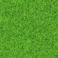 Seamless grass texture an idyllic Stock Photo