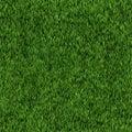 Seamless grass texture Royalty Free Stock Photo