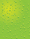 Seamless green background with water drops Royalty Free Stock Image