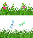 Seamless green grass with flowers flowers and dragonflies Royalty Free Stock Photo