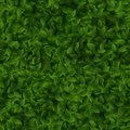 Seamless green leaves pattern spring or summer fresh background. EPS 10