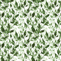 Seamless green pattern floral with greem leaves Royalty Free Stock Photos