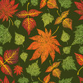 Seamless grunge leaves background. Thanksgiving Royalty Free Stock Image