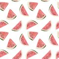 Seamless hand drawn beautiful watercolor tropical pattern with watermelon