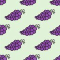 Seamless hand drawn pattern with grape vector illustration doodle style Royalty Free Stock Images
