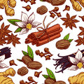 Seamless hand drawn spices cute background with different vanilla star anise ginger Stock Photography