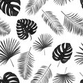 Seamless hand drawn  vector pattern with green palm leaves on wh Royalty Free Stock Photo