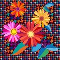 Classical checkered English fabric print with embroidered gerbera. Royalty Free Stock Photo