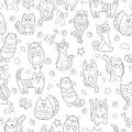 Seamless illustration with contour images cartoon cats