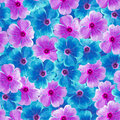 Seamless infinite  floral background. For design and printing. Background of natural  blue and purple Violets. Royalty Free Stock Photo