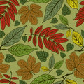 Seamless leaves background. Thanksgiving Stock Photography