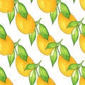 Seamless Lemon tree branch, watercolor painting on white background, illustration.