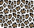 Seamless Leopard Skin Pattern for Textile Print for printed fabric design for Womenswear, underwear, activewear kidswear