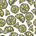 Seamless Lime Slices Background. Pattern of Citrus. Doodle Style Vector Illustration.