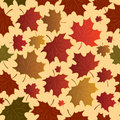 Seamless with maple leaves Stock Image