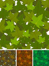 Seamless maple leaves background set illustration of a with spring autumn or summer canadian tree for nature wallpaper Stock Photo