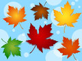 Seamless maple leaves fall colors Royalty Free Stock Photos