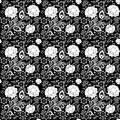 Seamless monochrome floral pattern for your design Royalty Free Stock Photos