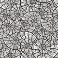 Seamless monochrome pattern with sea shells Stock Photo