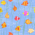 Seamless multicolored tropical fish background exotic Stock Photography