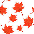 Seamless with orange maples Stock Image