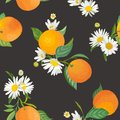 Seamless Orange pattern with tropic fruits, leaves, daisy flowers background. Hand drawn illustration in watercolor style summer Royalty Free Stock Photo