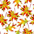 Seamless ornament with autumn leafs Royalty Free Stock Photography