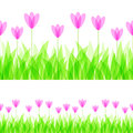 Seamless ornament with grass and flowers