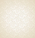 Seamless paisley design vector background Royalty Free Stock Images