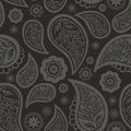 Seamless paisley texture Royalty Free Stock Photos