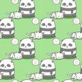 Seamless panda loves cat pattern.