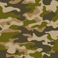 Seamless pattern. Abstract military or hunting camouflage background. Brown, green color. Vector illustration. repeated Royalty Free Stock Photo