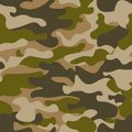 Seamless pattern. Abstract military or hunting camouflage background. Brown, green color. Vector illustration. repeated texture te Royalty Free Stock Photo
