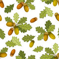 Seamless pattern with acorns and oak leaves green on a white background Stock Images