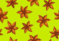 Seamless pattern with anise stars. Decorative ornament