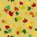 Seamless pattern autumn colored maple leaves Royalty Free Stock Images