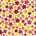 Seamless pattern with autumn maple leaves isolated on white background. Vector illustration