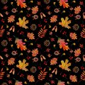 Seamless pattern autumn elements leaves cones acorns on black background