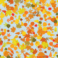 Seamless pattern with autumn leafs Stock Image