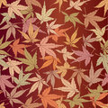 Seamless pattern from autumn maple leaves Stock Image