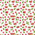 Seamless pattern background with fresh raspberry and leaves Royalty Free Stock Photo