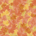 Seamless pattern background maple leafs. Fall wallpaper vector. Fabric ground.