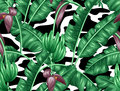 Seamless pattern with banana leaves. Decorative image of tropical foliage, flowers and fruits. Background Royalty Free Stock Photo