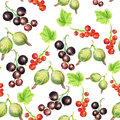 Seamless pattern with berries watercolor images of gooseberries red and black currant can be used as wallpaper web page Stock Image
