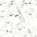 Seamless pattern with birds this is file of eps format Royalty Free Stock Photo
